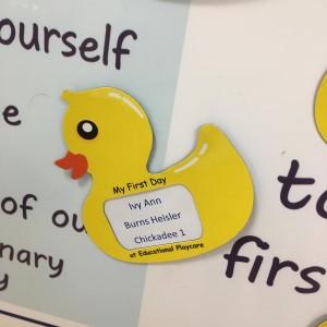 ivys-duck